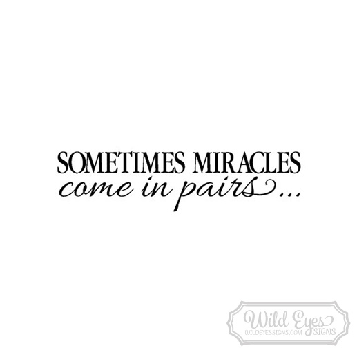 Sometimes Miracles Come in Pairs Vinyl Wall Decal